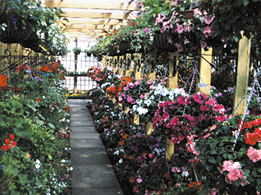 Trowell Garden Centre